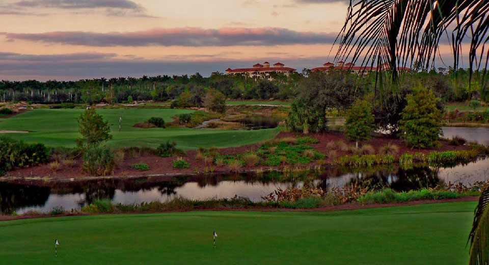 Tiburon Golf Club - Gold Course